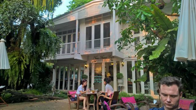 fern forest cafe 1 - Kopie