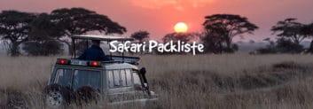 safari packliste