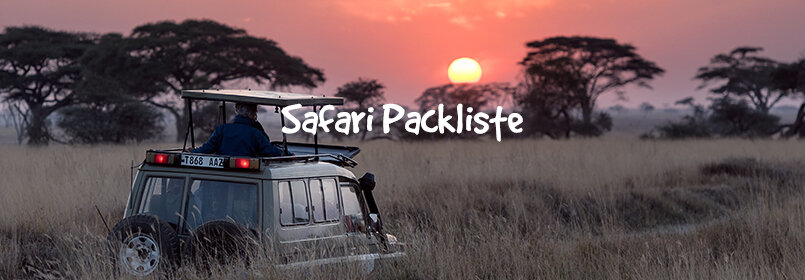 safari packliste